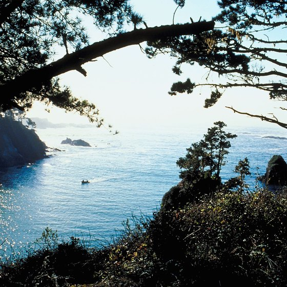Mendocino National Forest, tucked away in the mountains, includes several idyllic campgrounds.