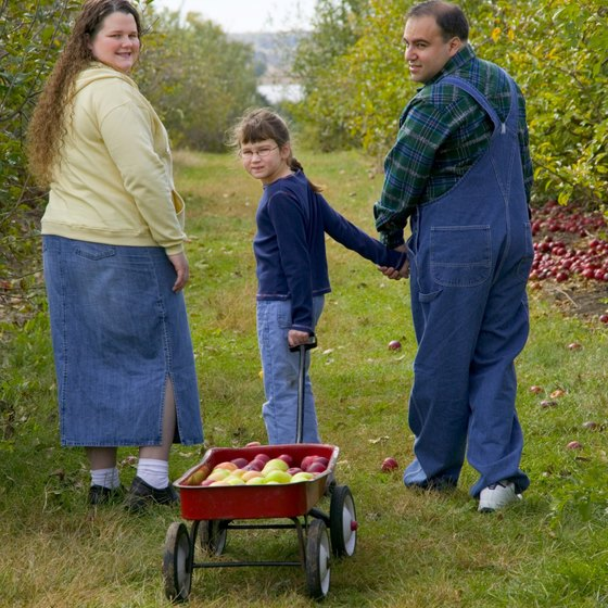 Heredity may contribute to your obesity risk.