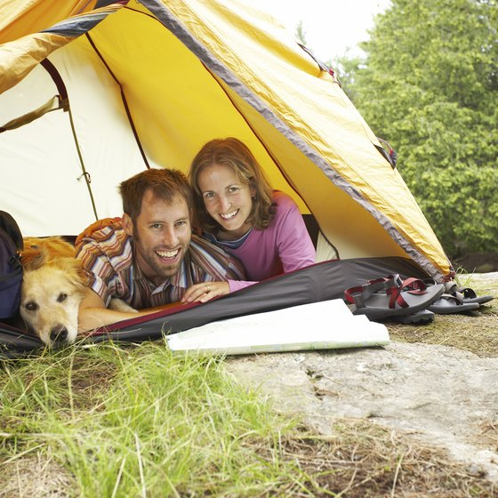 Sharing a tent with your dog is one option in Ocala National Forest.