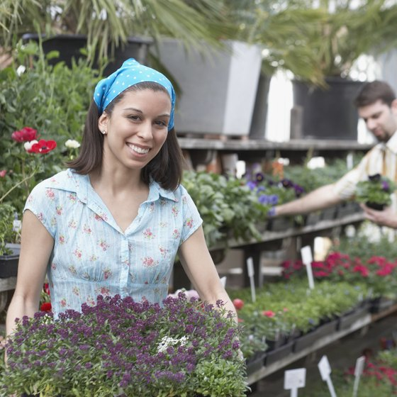 Plant Nurseries Can Segment The Marketplace To Maximize S