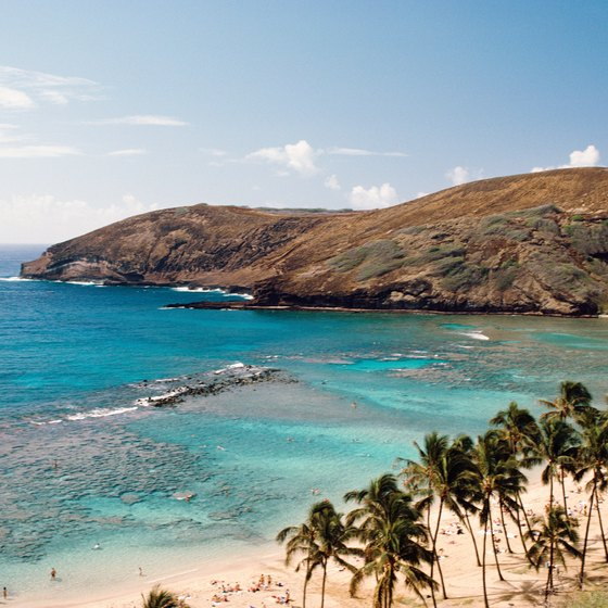 Cruise excursions in Hawaii include day trips to Maui beaches.