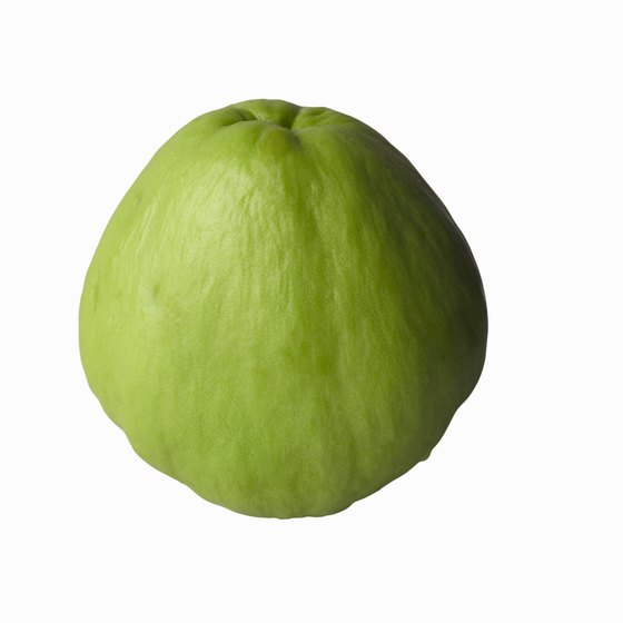 Chayote is also known as the chocho or vegetable pear.