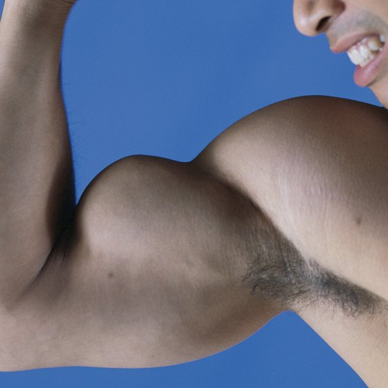 Biceps growth can be stimulated by specific workout routines.