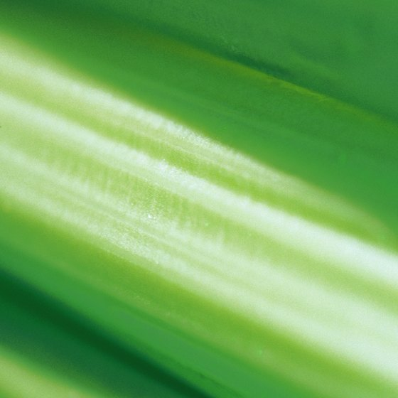 Celery doesn't have a high amount of soluble fiber.