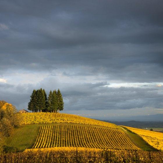 Farmland in Oregon.
