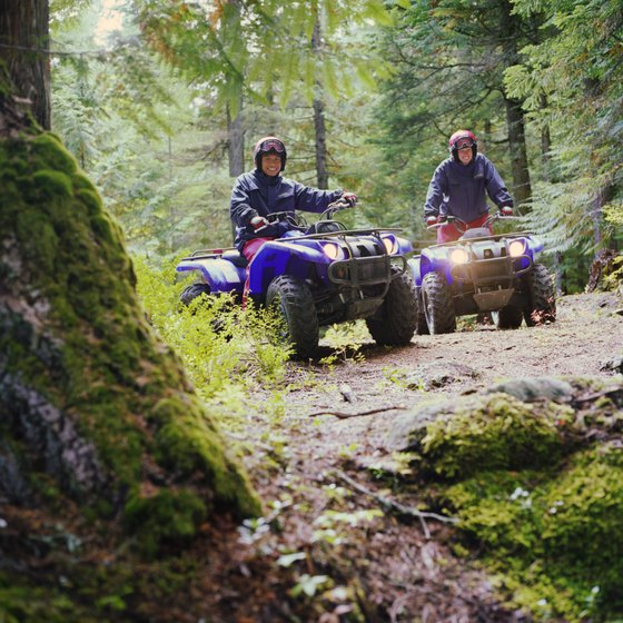 Explore rugged and remote areas in Colorado's national forest on your ATV.