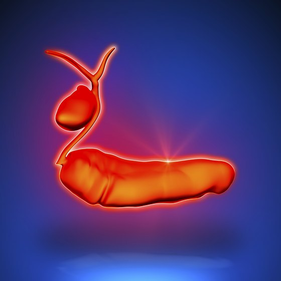 Illustration of pancreas and gallbladder.