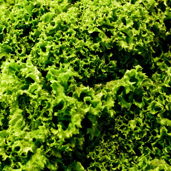 A cup of kale provides your entire daily recommended intake of vitamins A, C and K.