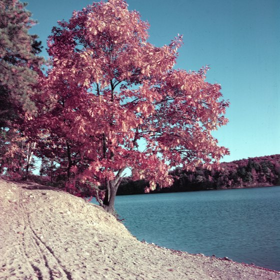 Thoreau's Walden Pond beckons hikers and seekers of the scenic alike.