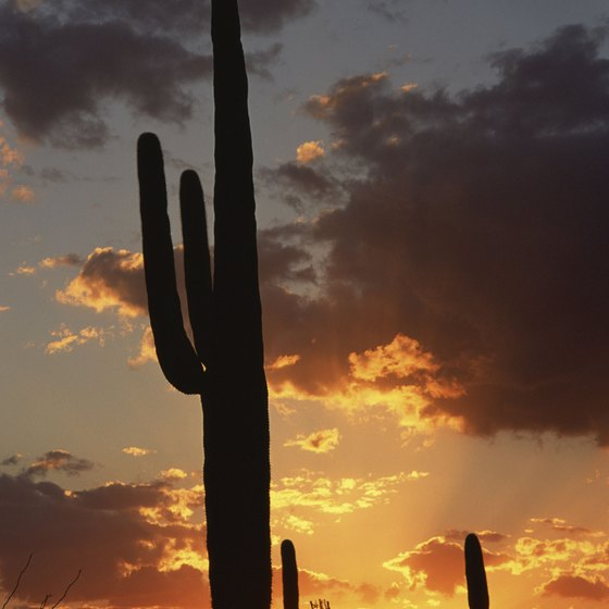 Only travel at day if crossing into Mexico through Organ Pipe Cactus National Monument in Arizona.