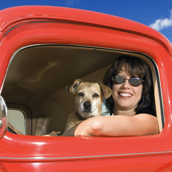 If you plan ahead, your Vegas road trip can be easy on Fido.