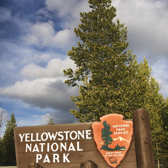 Pitch your tent in Yellowstone National Park.