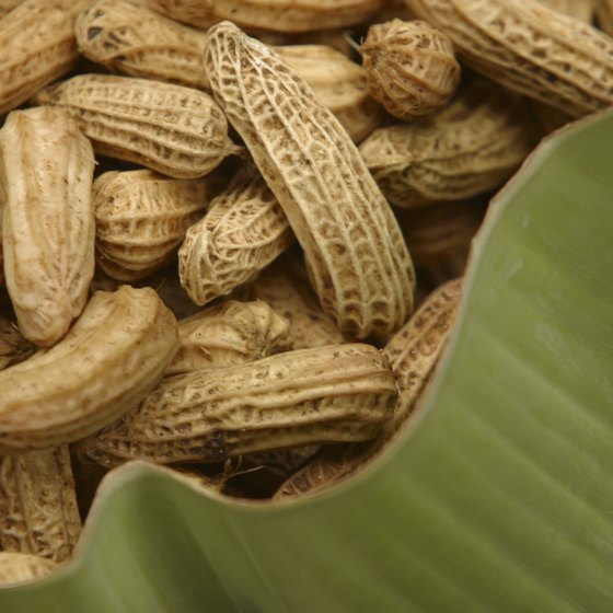 Raw or roasted spanish peanuts offer beneficial manganese and vitamin B-3.