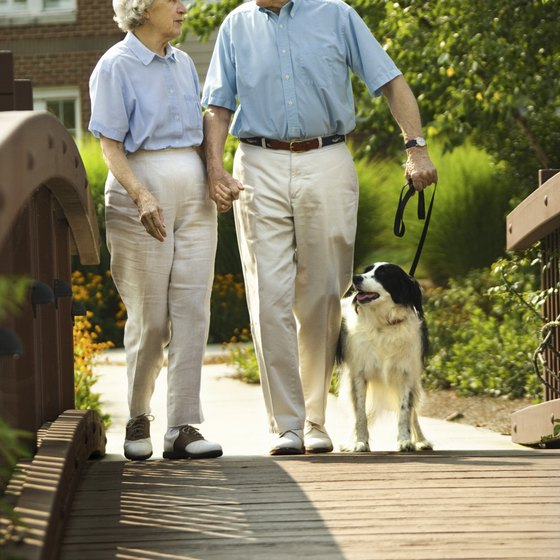 Walking is one of the easiest and most effective forms of exercise.