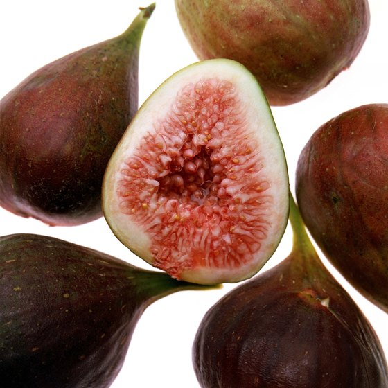Figs supply dietary fiber.