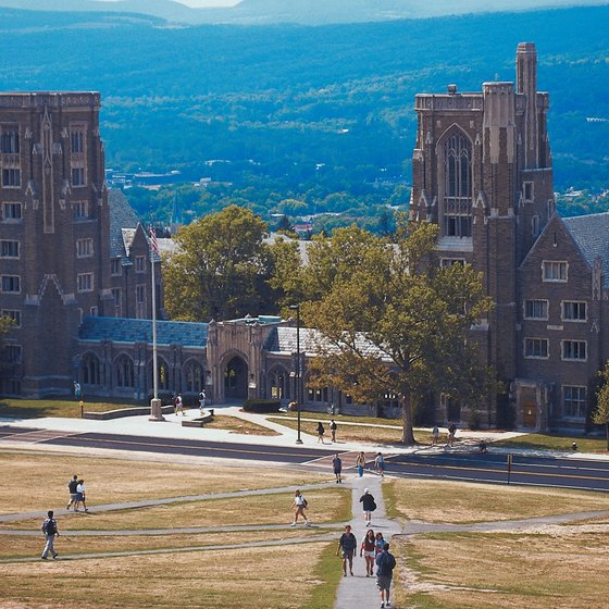 Cornell University is in Ithaca.