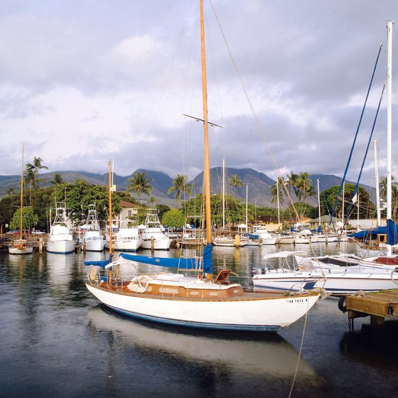 Ferries to Lana'i and Moloka'i leave from Lahaina Harbor in Maui.