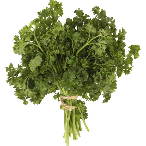Just an ounce of parsley provides your entire daily recommended vitamin K intake.
