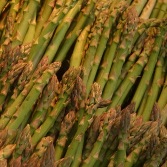 Asparagus is a member of the Lily family