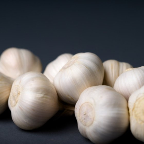 Garlic can fight yeast.