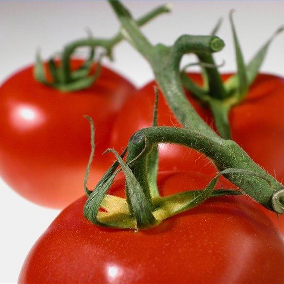Know Tomato Allergy Symptoms