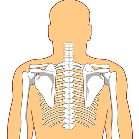 Spondylosis and spondylothesis affect the bones in your back and neck.