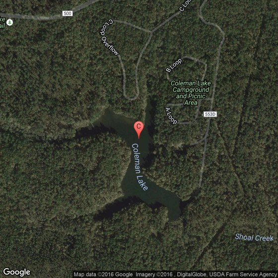 Horse Riding in Coleman Lake, Alabama | USA Today on