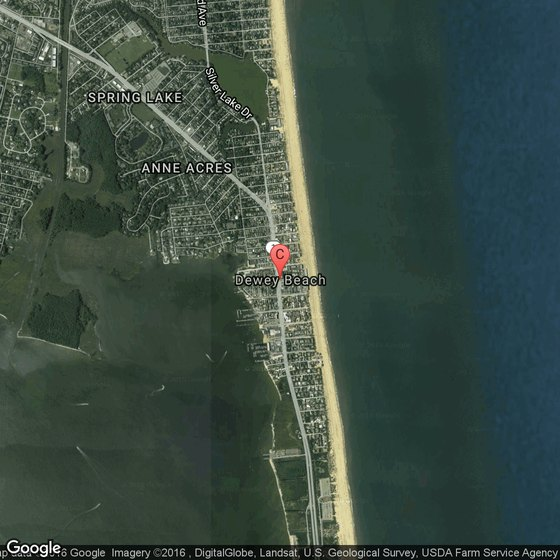Pet Friendly Lodging In Dewey Beach Delaware Usa Today