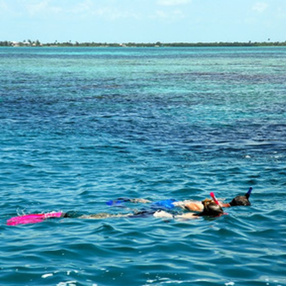 Snorkeling is one of the many water sports you can enjoy in Key Largo.