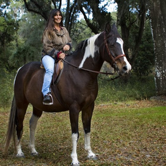 There are many options for horseback riding in the Florida panhandle.