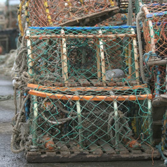 Learn to use a crab pot on the Bering Sea Crab Fishermen's Tour.