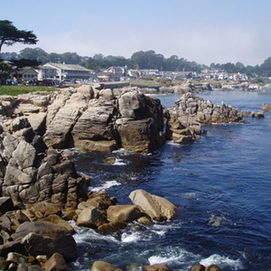 The rocky shoreline of Pacific Grove is a common site for travelers around Monterey, California.