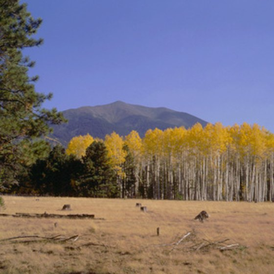 Flagstaff offers visitors a variety of outdoor activities.