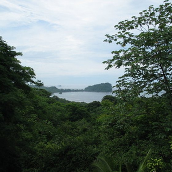 Costa Rica's rainforests are among the world's most visited.