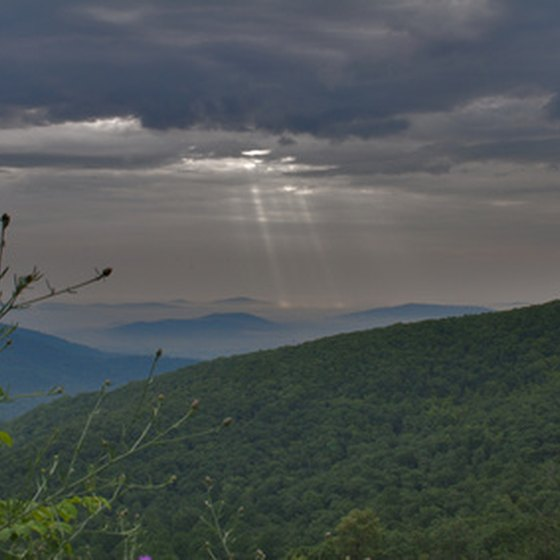 Shenandoah National Park is a major attraction near Crozet.