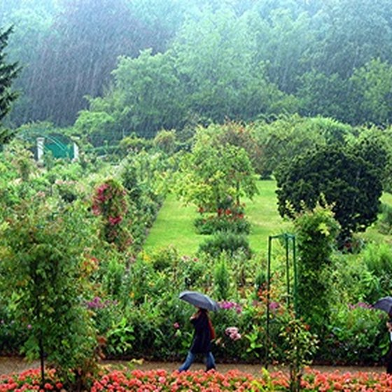 Monet's gardens in Giverny are open for tours.