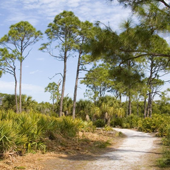 Caladesi Island Florida: RV Resorts In Dunedin, Florida