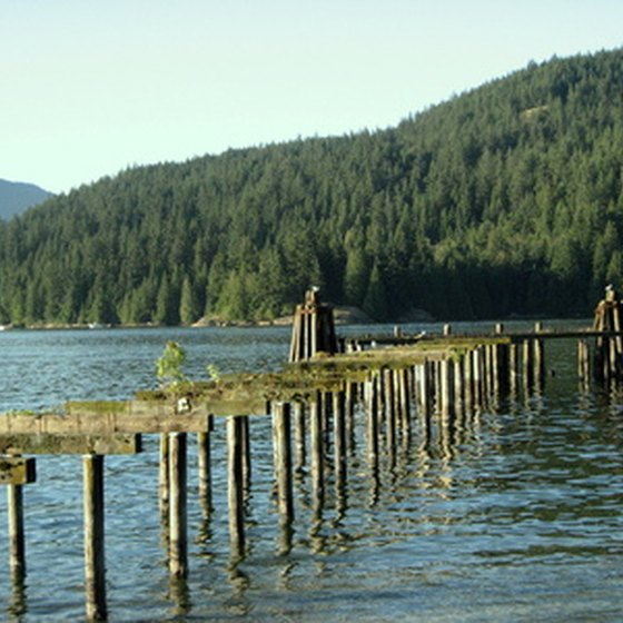 The Freshwater Fisheries Society of BC cites Vancouver Island as a fly-fisher's paradise.