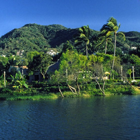 A lush section of Puerta Vallarta's coastline.