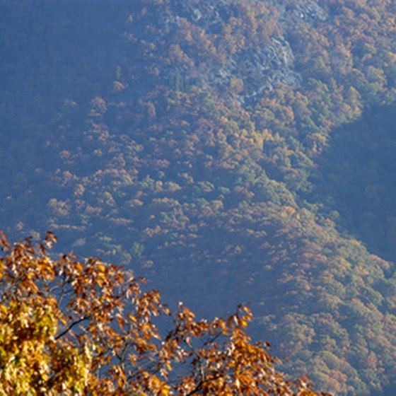 The Blue Ridge Mountains run from Georgia to Pennsylvania, traversing North Carolina.