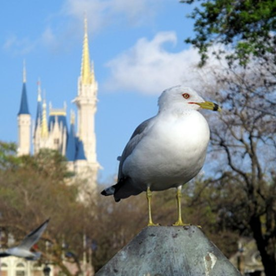 The Cinderella Castle (background) is a well known landmark in Disney World.