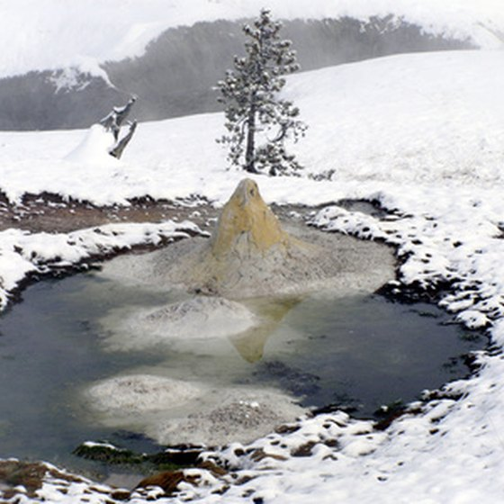 Yellowstone's famous fountain pots, also called mud volcanoes, continue to steam during the coldest winter months.