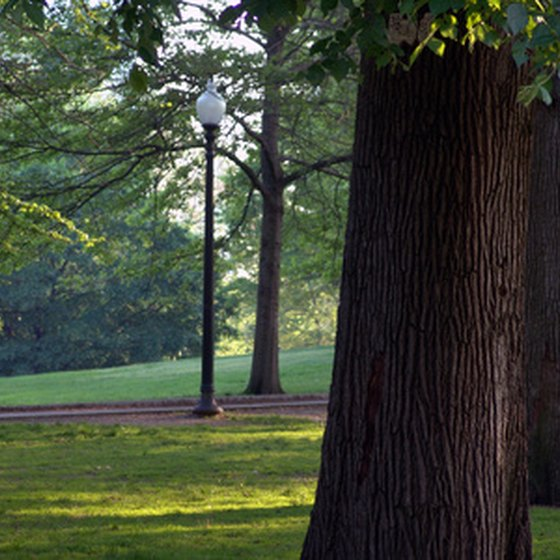 Visit Some of Boston's Beautiful Parks