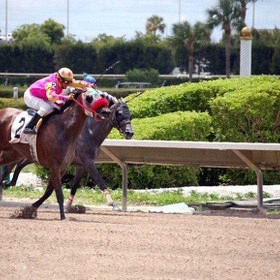 Lone Star Park has live Thoroughbred horse racing from April to July.