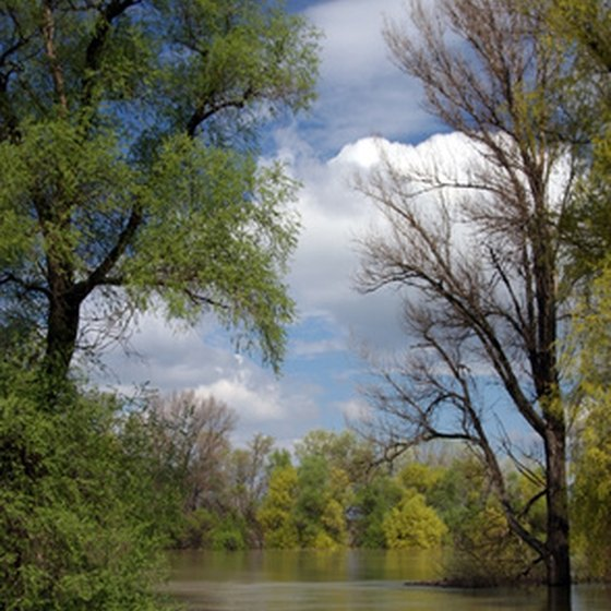 North Texas is home to a number of rivers.