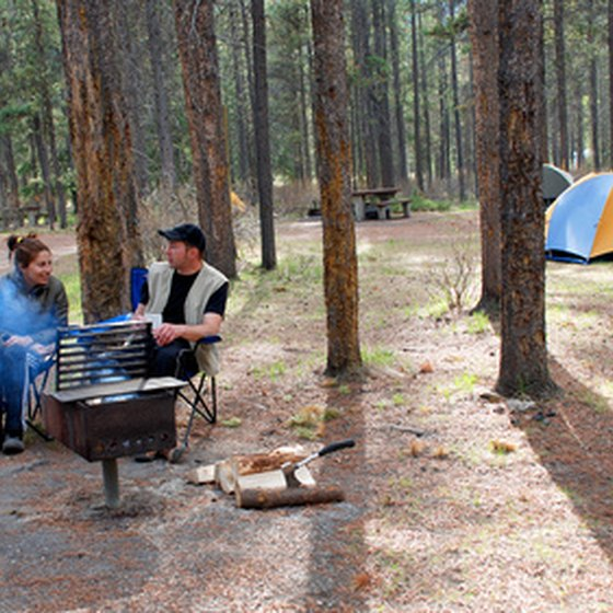 Camping is one of several things to do at Denali National Park.