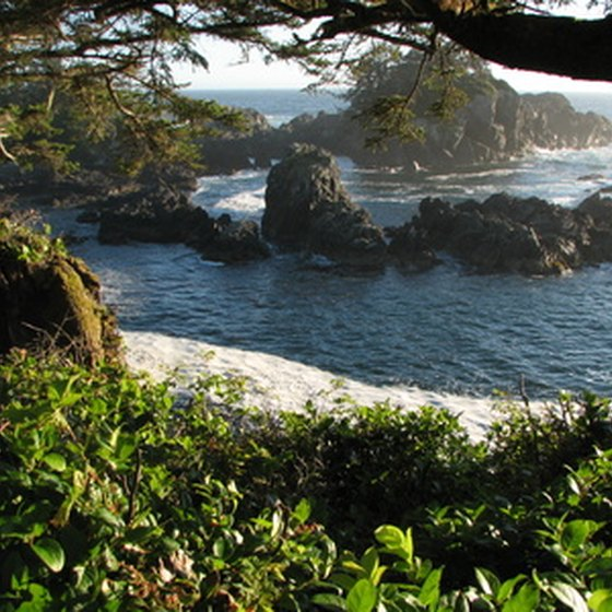 At Pacific Rim National Park Reserve you can capture sandy beaches, lush forests and rocky crags in one shot.