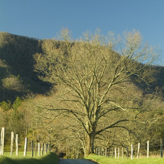 Great Smoky Mountains/Cades Cove