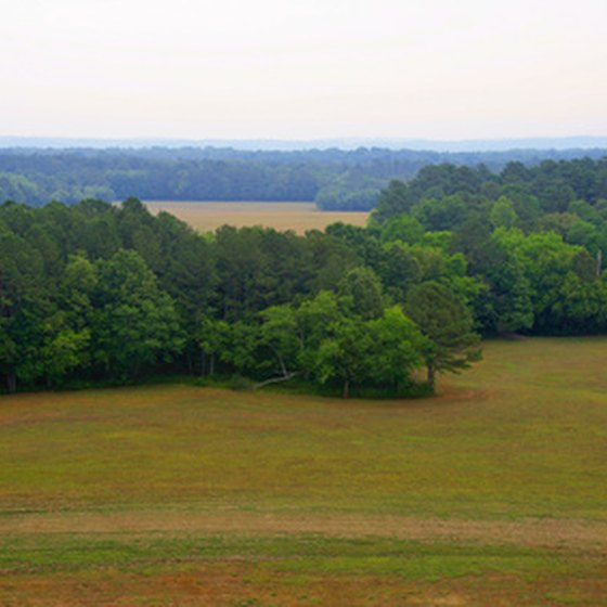 Middle Tennessee is marked by rolling hills and forested areas.