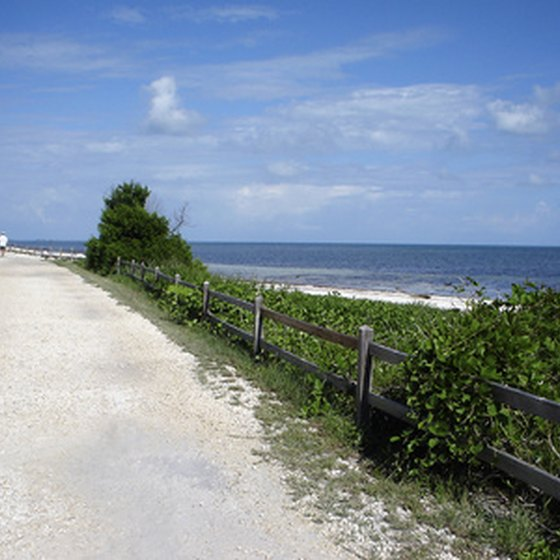 Beachside footpath in the Florida Keys
